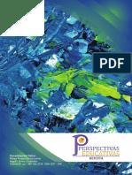 Revista Perspectivas Educativas.pdf