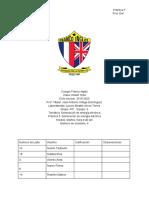 Protocolo 5.pdf