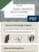 Funciones y sentidos de la cultura, presentacion