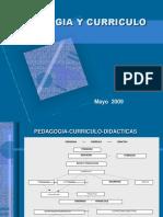 pedagogia-curriculo-y-modelos-pedagogico