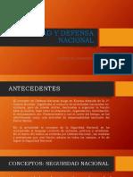 SEGURIDAD Y DEFENSA NACIONAL DIAPOS
