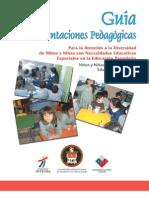 Guia de Orientaciones Pedagogicas