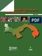 Diagnostico situacional y plan de salud.pdf