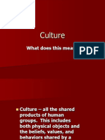 Components of Culture.ppt