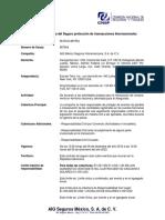 AIG Contrato de proteccion (Stephen Hofer- Surety Bond)