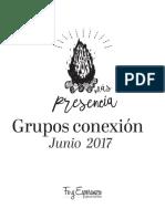 Grupos conexión (Junio)