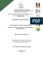 Tesis-Elizabeth-Gimena-Callapa-Flores