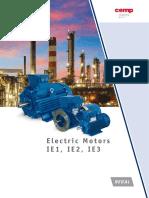 Motores-eléctricos-Spanish.pdf