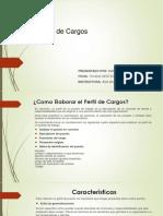 perfiles de cargo Marcela.pptx