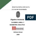 Álgebra Vectorial 2008