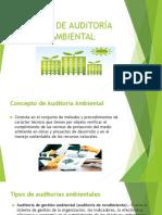 GUÍA DE AUDITORÍA AMBIENTAL