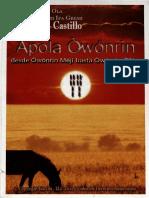 Livro_Apola_Owonrin.pdf
