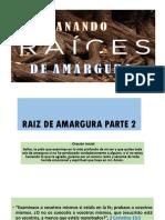 RAIZ DE AMARGURA