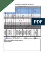 FORMATO PERFILES PRUEBA DE BANFE - FUNCIONES EJECUTIVAS.pdf