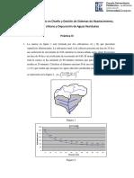 Práctica III.pdf