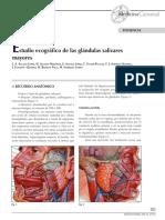 ESTUDIO ECOGRAFICO DE LAS GLANDULAS SALIBALES MAYORES - 383-391