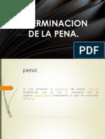 penal shiomara