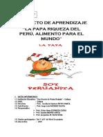 PROYECTO DE PAPA SECUNDARIA