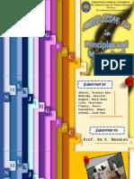 FLAPrinciples.pptx