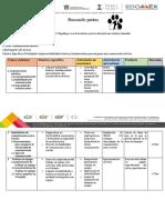 5.3  programas de capacitación
