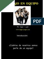 LEY  EQUIPO- EDGAR YUNGAN copia.pdf