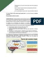 NEUROCIENCIAS Y APRENDIZAJE.docx