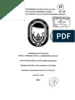 Suero Iquiapaza_IF_2018.pdf