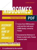 Parts and Functions of Ribosomes; A Report in General Biology 1