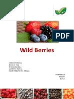wild berries Finlanda.pdf