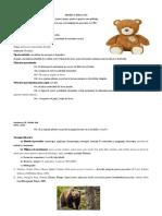 Proiect de lecție