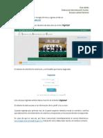 Guia_SAE.pdf