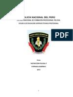 8 SILABO DESARROLLADO DE INSTRUCCIÓN POLICIAL II.docx