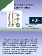 Biomecanica functionala a coloanei vertebrale Radu Rodica Maria, Grupa 3.pptx