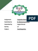 Linguistic boundaries in Rahim Yar Khan District.docx