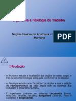 02 - Anatomia e Fisiologia Humana - Articulações