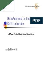 RadioAnatomie_Ostu00E9o-articulaire