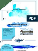 caracteristicasquimicas-191015010004.pptx