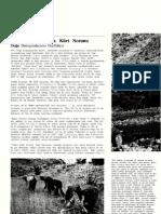 1971-1980 Arasinda Kürt Sorunu- Sosyalizm ve Toplumsal Mücadeleler Ansiklopedisi
