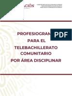 Profesiograma-2-19-Actualizacion (1)