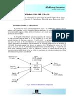 METABOLISMO DEL POTASIO.pdf