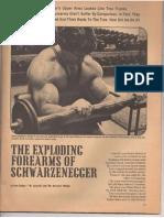 Arnold Schwarzenegger Forearms