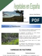 Paisajes Vegetales en España.pptx