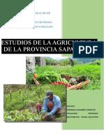 PRÁCTICAS SAPAHAQUI - TRANSFORMACIÓN Y COMERCIALIZACIÓN (CORREGIDO).docx