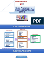 SESIÓ_08_-_El_entorno_Financiero_y_la_determinación_de_los_Tipos_de_Cambio