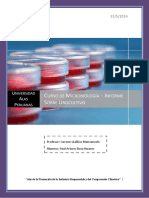 228060395-Urocultivo-Informe-de-Microbiologia