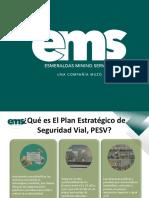 PESV Plan Estrategico de Seguridad Vial (1)