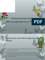 interaccionpresentaciondemicrobiologia-121119032346-phpapp01 (1).pptx