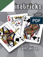 Tyler Wilson - Dominatricks.pdf
