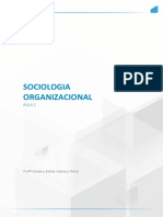 Sociologia ORGANIZACIONAL AULA 1