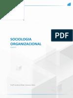 Sociologia ORGANIZACIONAL AULA 5